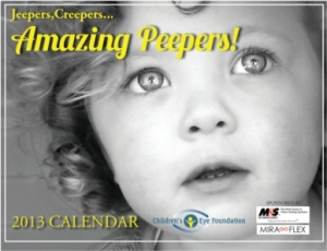 2013 Eyecare for Kids calendar