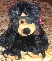 Beary the Black Bear(2)
