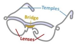 drawing of glasses with parts labeled: lenses, bridge (nose piece), and temples (ear pieces)